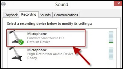 Enable the Microphone